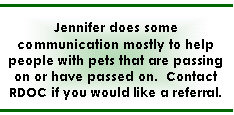 Animal Communication - textbox