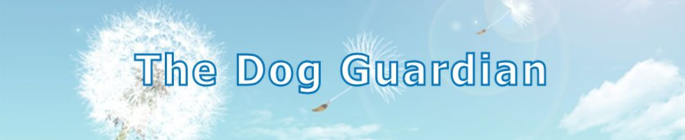 header - The Dog Guardian