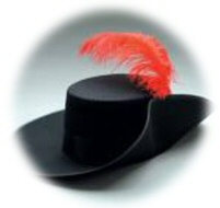 image:  feather in cap
