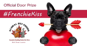 image: Frenchie Kiss