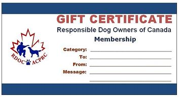 image:  gift certificate